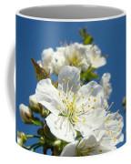 White Blossoms Art Prints Spring Tree Blossoms Canvas Baslee Troutman Coffee Mug