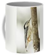 White-breasted Nuthatch Coffee Mug by LeeAnn McLaneGoetz McLaneGoetzStudioLLCcom