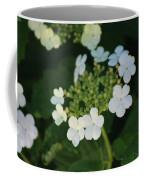 White Bridal Wreath Flowers Coffee Mug