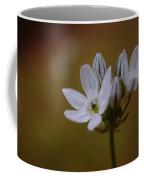 White Brodiaea Coffee Mug