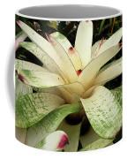 White Bromeliad Coffee Mug