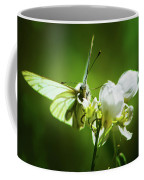 White Butterfly Coffee Mug