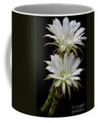 White Cactus Flowers Coffee Mug