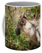 White Cat On The Hunt  Coffee Mug