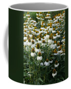 White Coneflower Field Coffee Mug