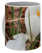 White Crocus Coffee Mug