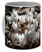 White Cyclamen Coffee Mug