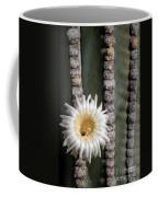 White Desert Jewel Coffee Mug