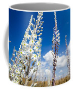 White Flowering Sea Squill On A Blue Sky Coffee Mug