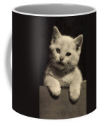 White Fluffy Kitten Coffee Mug