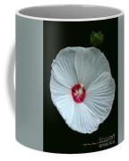 White Hibisci #18 Coffee Mug