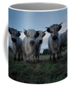 White High Park Cow Herd Coffee Mug