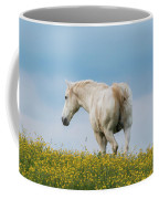 White Horse Of Cataloochee Ranch - May 30 2017 Coffee Mug by D K Wall