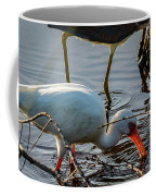 White Ibis Eating Coffee Mug