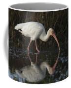 White Ibis Feeding In Morning Light Coffee Mug