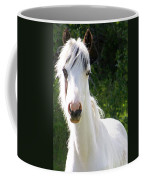 White Indian Pony Coffee Mug