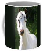 White Indian Pony Coffee Mug