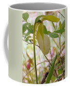 White Lady Slipper Coffee Mug