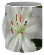 White Lily 1 Coffee Mug