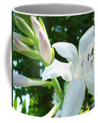 White Lily Flowers Art Prints Lilies Giclee Baslee Troutman Coffee Mug