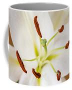 White Lily Macro Coffee Mug