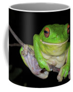White-lipped Tree Frog Coffee Mug