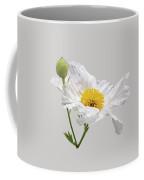 White Matilija Poppy On White Coffee Mug