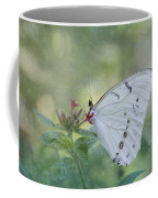 White Morpho Butterfly Coffee Mug