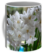 White Narcissi Spring Flower 2 Coffee Mug