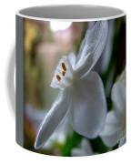 White Narcissi Spring Flower 4 Coffee Mug