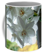White Narcissi Spring Flower Coffee Mug