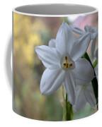 White Narcissi Spring Flowers 3 Coffee Mug