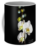 White Orchid On Black Bw Coffee Mug