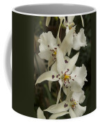 White Orchids 2 Coffee Mug
