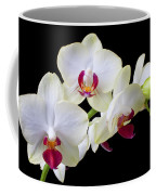 White Orchids Coffee Mug by Garry Gay
