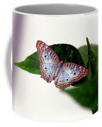 White Peacock Butterfly 2 Coffee Mug