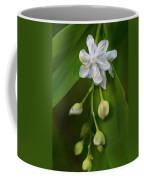White Pearl Coffee Mug