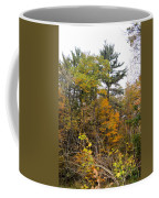 White Pine Hollow State Forest Coffee Mug
