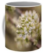 White Plum Blossom Coffee Mug