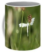 White Plume Moth, Coffee Mug
