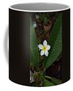 White Plumeria Coffee Mug