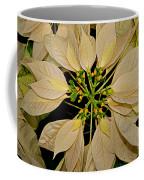 White Poinsettia Coffee Mug
