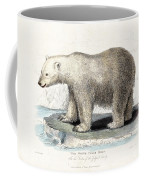 White Polar Bear On Ice Floe Coffee Mug