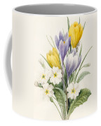 White Primroses And Early Hybrid Crocuses Coffee Mug