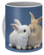 White Rabbit And Sandy Rabbit Coffee Mug