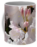 White Rhodies Pink Rhododendrons Flowers Art Prints Canvas Botanical Baslee Troutman Coffee Mug