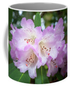 White Rhododendron Flowers With A Purple Fringe Coffee Mug
