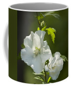 White Rose Of Sharon Squared Coffee Mug by Teresa Mucha