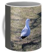 White Seagull Coffee Mug
