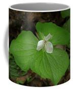 White Spring Trillium Coffee Mug